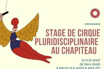 stage-pluridisciplinaire